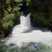 How old is little Ella going to be when she boofs Tutea Falls for the first time? . . . . . #inwaterwelive #weareouthete #kaituna #tuteafalls #kaitunariver #newzealand #whitewater #kayaking #waterfall