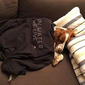 Embrace the lifestyle from the couch. . . . . . . . #inwaterwelive #inwaterdogsleep #couchpotato #athleteslife #couchlife